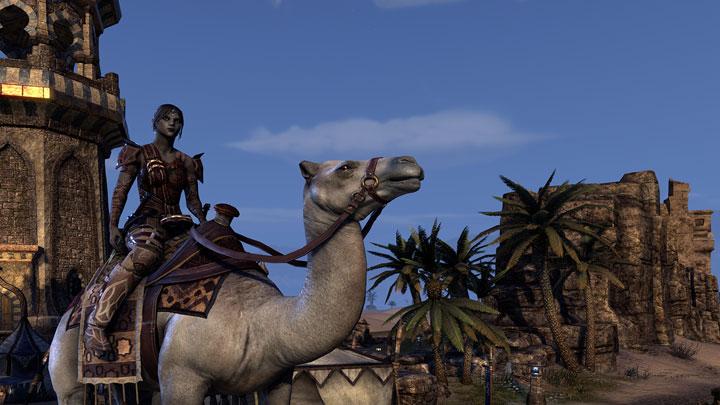 Zeht's Cloud Camel